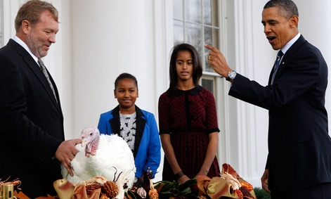 President Barack Obama pardons a turkey in 2011.
