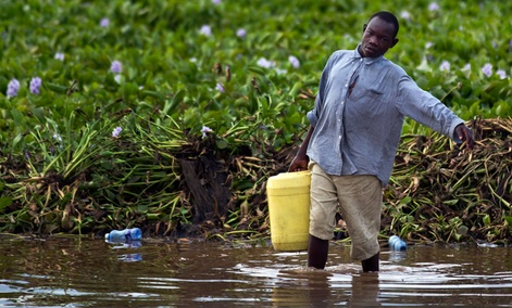 A man gathers water from Lake Victoria in Kisumu, Kenya.