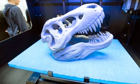 A 3D print of a dinosaur's head lies in a printer of the US company MakerBot of New York.