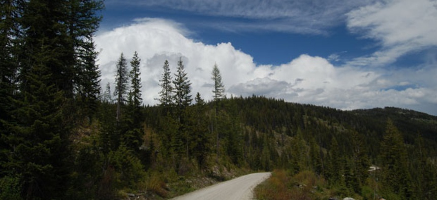 The Forest Service owns and manages many national forests, including Montana's Lolo National Forest .