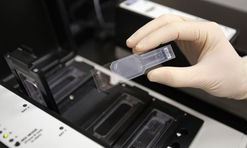 A biologist holds a slide prepared for testing in the micro array for biological hazards.