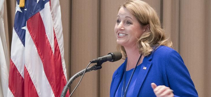 Suzette Kent, Federal CIO