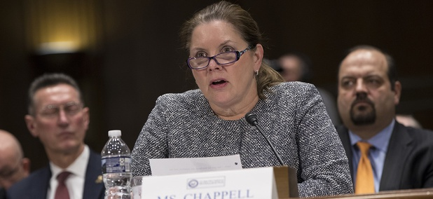 Jane Chappell, vice president of Global Intelligence Solutions at Raytheon, testifies before the Senate Intelligence Committee as lawmakers examine problems and practices of issuing security clearances to government employees.