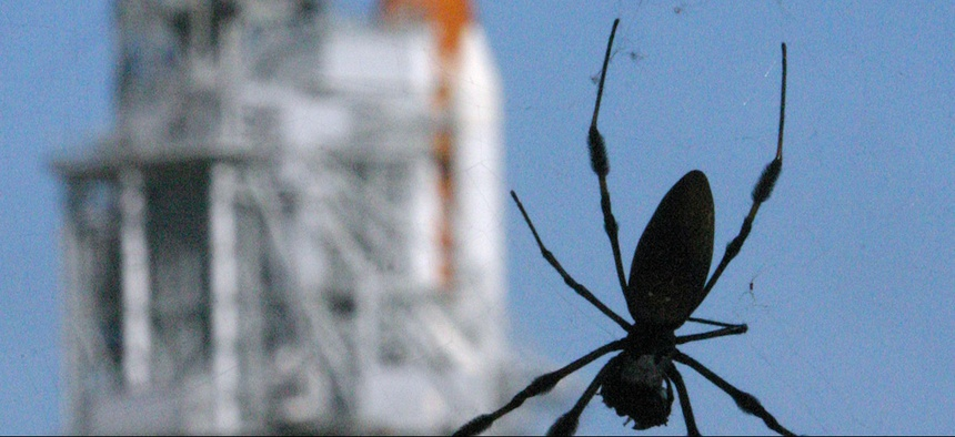 Spiders hang from their web near the Space Shuttle Atlantis on Pad 39B at the Kennedy Space Center in Cape Canaveral, Fla., Monday, Aug. 28, 2006.
