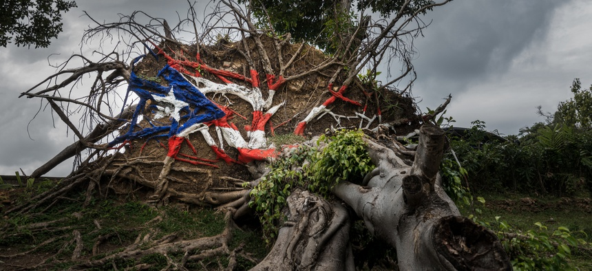 A tree uprooted by Hurricane Maria in San Juan has been painted like the Puerto Rico flag.