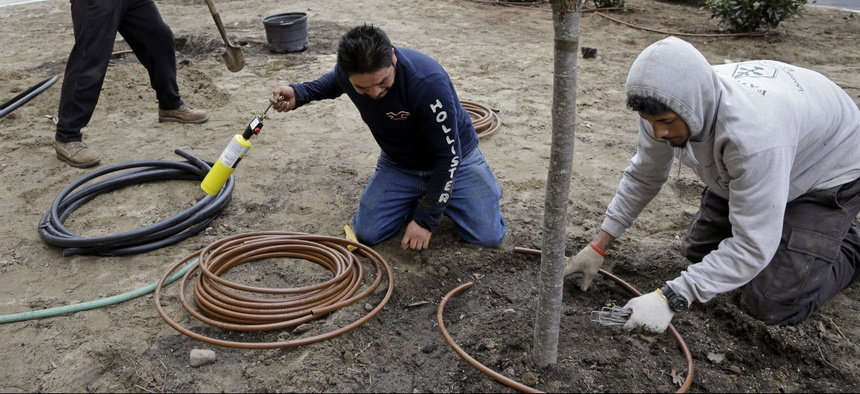Workers hired through the H-2B visa program install an irrigation system in Manchester, N.H.
