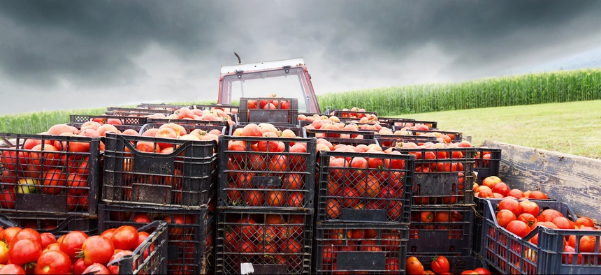 FDA Unveils Next Step on its Journey to Develop a Safer Food System