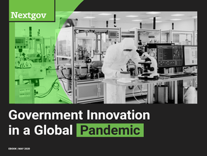 Government Innovation in a Global Pandemic